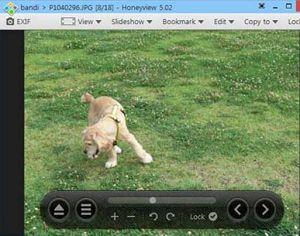 分享免費看圖軟體 Honeyview 繁中 速度超快 好用 可以取代 ACDSee
